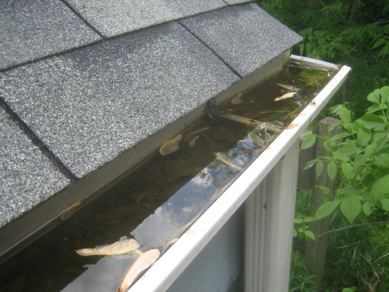 How to Unblock your Gutters