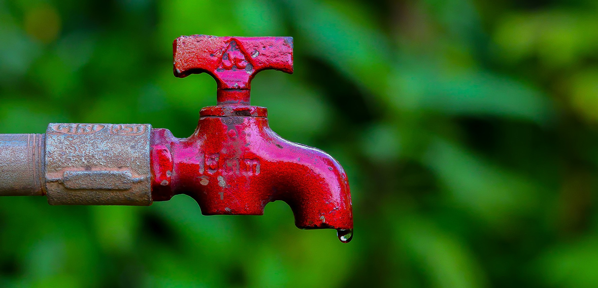 Ways to save more water at home
